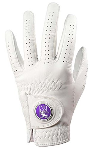 Northwestern Wildcats Golf Glove   B01JD6NLQ6