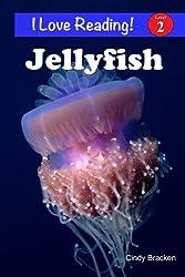 Jellyfish (An