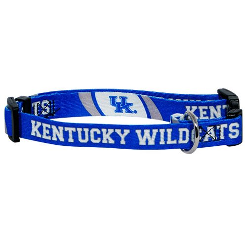 NCAA Hunter MFG Kentucky Wildcats Dog Collar, Small