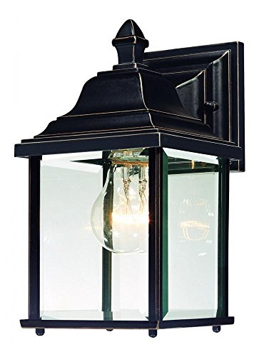 - Dolan Designs 931-20 Charleston Outdoor Wall Light, 10 1/4