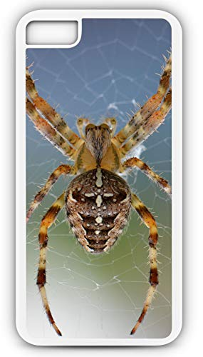 iPhone 8 Plus 8+ Case Spider Spin Web Nature Bug Animal Macro Customizable by TYD Designs in White Plastic Black Rubber Tough -