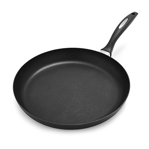 evolution frying pan - 9