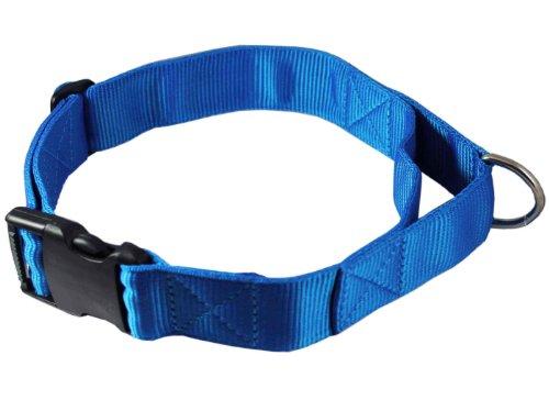 Adjustable Nylon Dog Collar with Handle 1.75