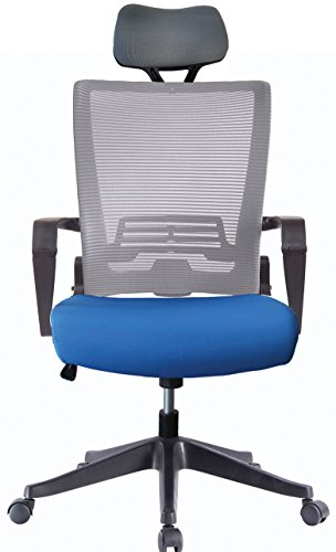Ergonomic Mesh Back Office Task Chair Molded Foam W/Adjustable Lumber Headrest, Folded Mesh Back, Designer Chair ANSI/BIFMA TB117-2013 (Custom Color Seat Fabric-Blue W/Headrest and Grey (Ergo Task Chair)