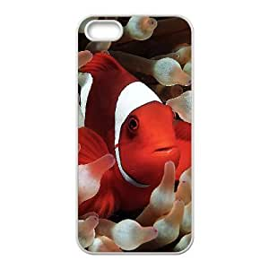 Customized case Of Clown Fish Hard Case for iPhone 5,5S