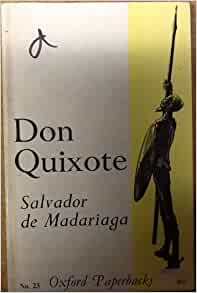 Essay on don quixote