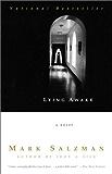 Lying Awake: A Novel (Vintage Contemporaries)