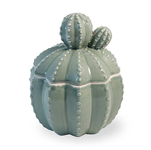Celebrar el hogar Cactus Decorativo Tarro de cerámica con Tapa