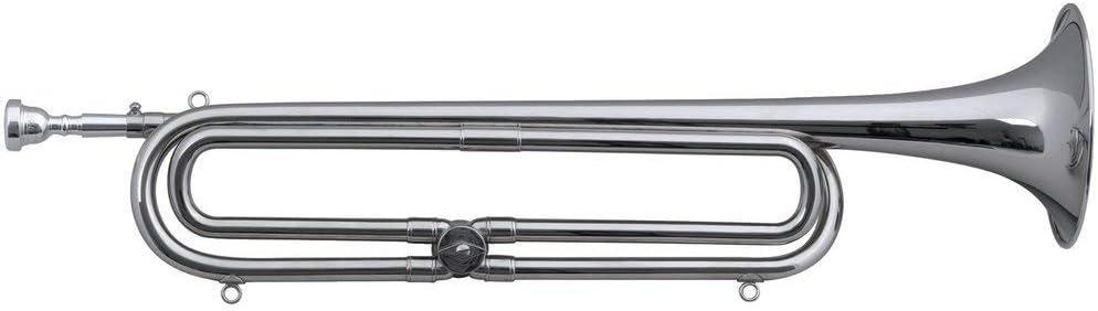 Chester F708050 - Trompeta para fanfarria en Sib/Mib: Amazon.es ...