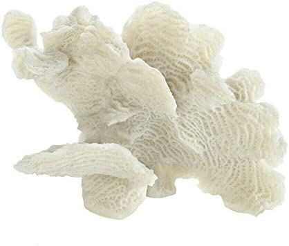 Accent Large White Coral Tabletop product image