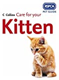 Care for Your Kitten (RSPCA Pet Guides)