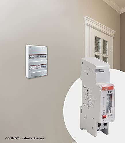1 courant alternatif /à fermeture Gris 1 canal ABB ABB426291GSB Horloge analogique 24h
