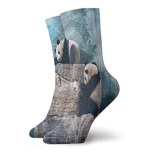 Patterned Socks Panda Bear in Beijing Zoo on Stones Hiker Boot - Beijing Stone