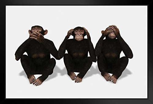 Three Monkeys Speak See and Hear No Evil Conceptual Black Wood Framed Art Poster 20x14 (Hear No Evil Posters)