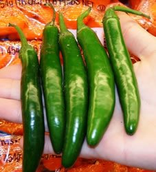 Peppers - Serrano Hot Peppers Seeds