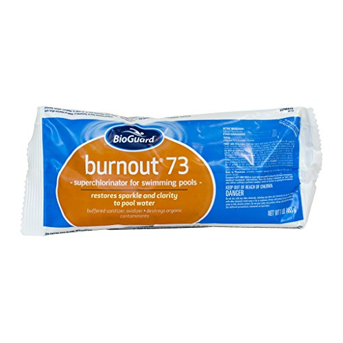 BioGuard Burnout 73 (1 lb) (24 Pack) by BioGuard