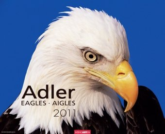 Adler 2011 / Eagles 2011 / Aigles 2011