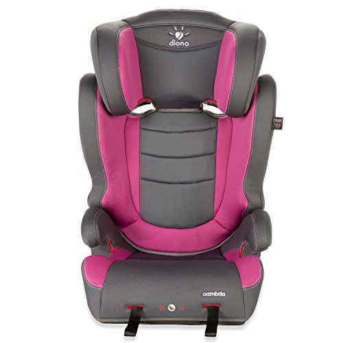 Diono Cambria Booster 2-in-1 Car Seat, For Children from 40-120 Pounds, Raspberry