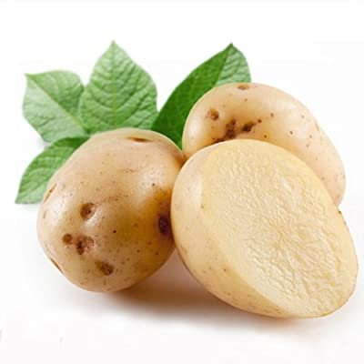 Seeds Potato Anti Nutrition Green Vegetable Dahlia Garden Pcs Sweet 20pcs