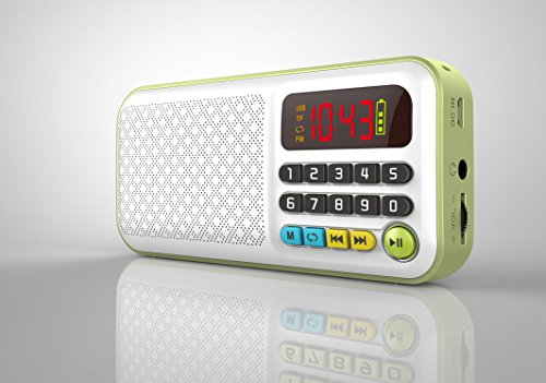 Anncia Mini Digital Portable Music MP3 Player With Two Micro SD input and FM Radio Speaker (536E Green) (Player Sd Mp3)