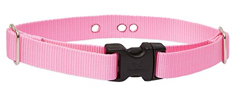 electronic dog pink - 2