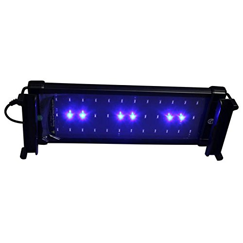 MingDak Aquarium Lights LED Fish Tank Hood Light for Freshwater and Saltwater, Universal Extendable Stands, 36 LEDs,11-inch,Lighting Color White and Blue