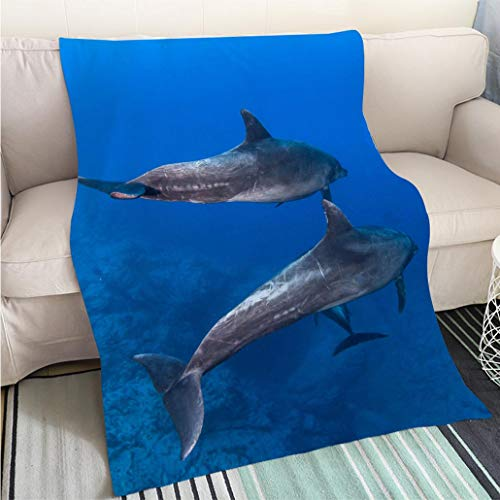 BEICICI Breathable Flannel Warm Weighted Blanket Bottlenose Dolphin at Socorro Island Living Room/Bedroom Warm Blanket