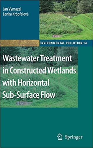 Wastewater Treatment in Constructed Wetlands with Horizontal