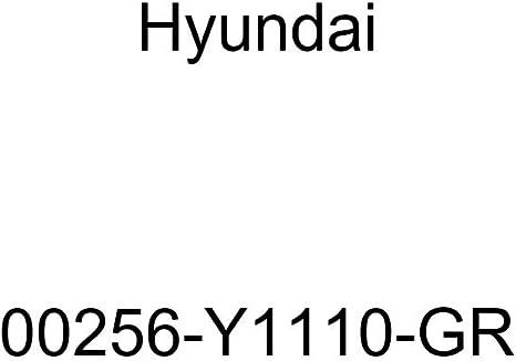 HYUNDAI Genuine 00256-Y1110-GR Floor Mat