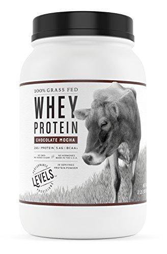 Levels 2LB Chocolate Mocha 100% Grass Fed Whey Protein, Undenatured, No GMOs