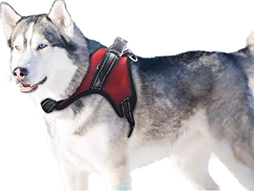 Dog Plastic Harness - BINGPET Dog Harness Medium with Handle No Pull Padded Reflective Red