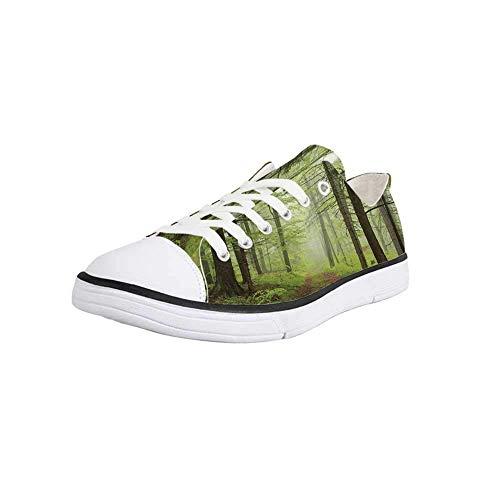 Canvas Sneaker Low Top Shoes,Outdoor,Trail Trough Foggy Alders Beeches Oaks Coniferous Grove Hiking Theme Man 11 (Alder Sofa)