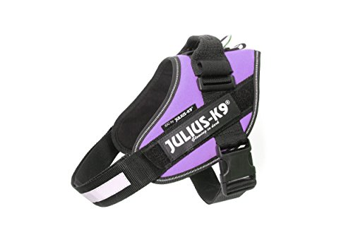 Julius-K9 IDC-Power Harness, Purple, Size: 0/58-76 cm/23-30""