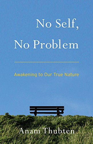 No Self, No Problem: Awakening to Our True Nature