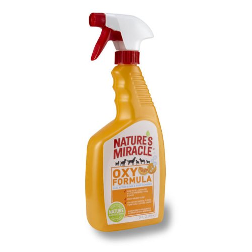 Feces Stain Removal (Nature's Miracle Stain & Odor Remover, Orange Oxy, Trigger Spray)