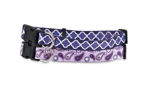 Petmate 11420 2-Side Pet Collar, 1 by 16 to 26-Inch, Paisley Arabesque Purple