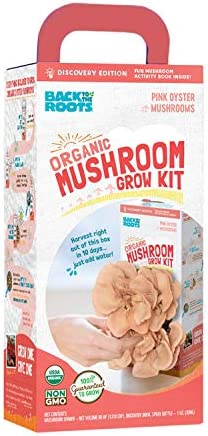 Back to the Roots Organic Pink Grow Kit, Harvest Gourmet Oyster Mushrooms