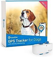Tractive Rastreador de Perro GPS Impermeable – ubicación y Actividad, Alcance Ilimitado y Funciona con Cualqui