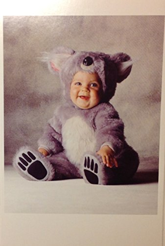 (10) Tom Arma's Baby in a Koala Costume Boxed Blank Note Cards - White Envelopes- 4 x 6 (Boxed Costume Set)