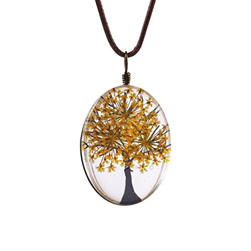 FM42 Yellow Life of Tree Queen Anne's Lace Dried Flowers Oval Pendant Necklace FN4075 (Queen Lace Annes)