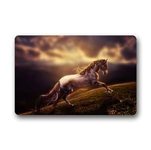 Custom It horse run Rectangular Decorative non slip Doormat 15.7 by 23.6 by 3/16-Inch