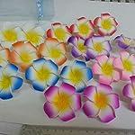Artificial-Plumeria-10Pcs-5-Sizes-Avail-Plumeria-Hawaiian-Pe-Foam-Frangipani-Artificial-Flower-for-Wedding-Party-Decoration-Fake-Egg-Flower-BouquetsRed8Cm