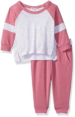 (Splendid Girls' Kids and Baby Long Sleeve Sweatshirt and Bottom 2 Piece Set, Rose Tweed, 18/24)