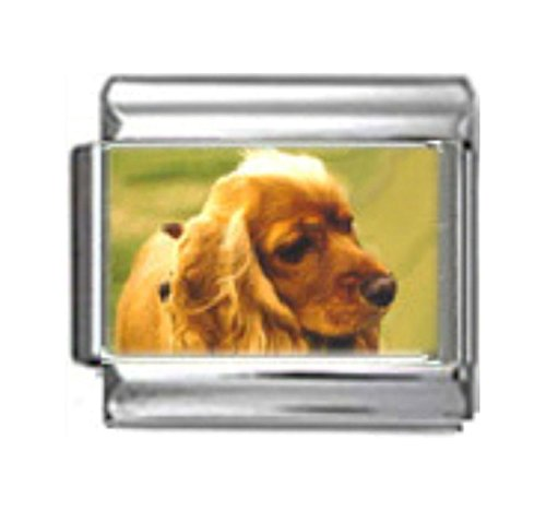 Stylysh Charms Cocker Spaniel Dog Photo Italian 9mm Link DG156 ()
