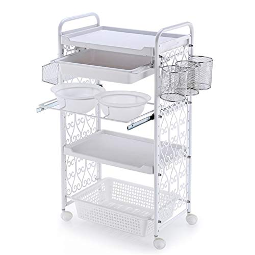 SOTROLLEY 4 Tier Beauty Cart SPA Salon Trolley Hairdress with Hair Color Bowls Tools Organizer Storage Tray on Rolling Wheels White (Trolley Cart Facial)