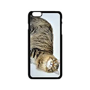 Cat Is Thinking Hight Quality Plastic Case for Iphone 6