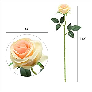 Nubry 10pcs Artificial Silk Rose Flower Bouquet Lifelike Fake Rose for Wedding Home Party Decoration Event Gift (Champagne) 2