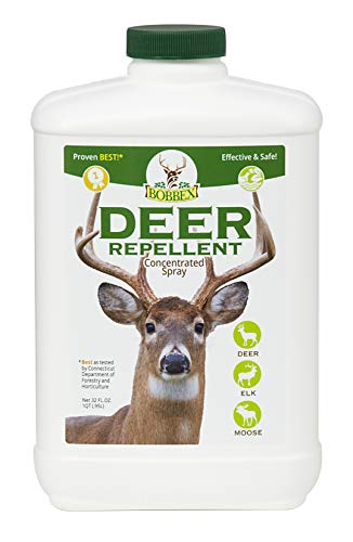 Cheap Concentrated Deer Repellent - Bobbex | Deer, Elk, and Moose Deterrent Concentrate (32 oz.) B550100 deer repellent