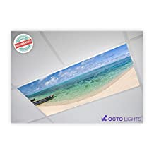 Beach 005 2x4 Flexible Fluorescent Light Cover