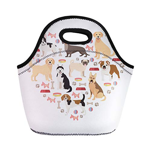 Semtomn Lunch Bags Retriever Labrador Dog Lovers Flat Collection Cartoon Breeds White Neoprene Lunch Bag Lunchbox Tote Bag Portable Picnic Bag Cooler Bag